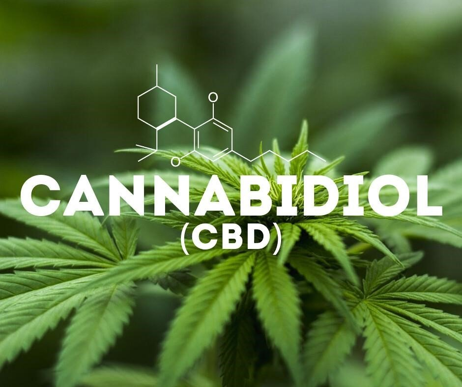 cannabidiol word overlayed over cbd hemp plant
