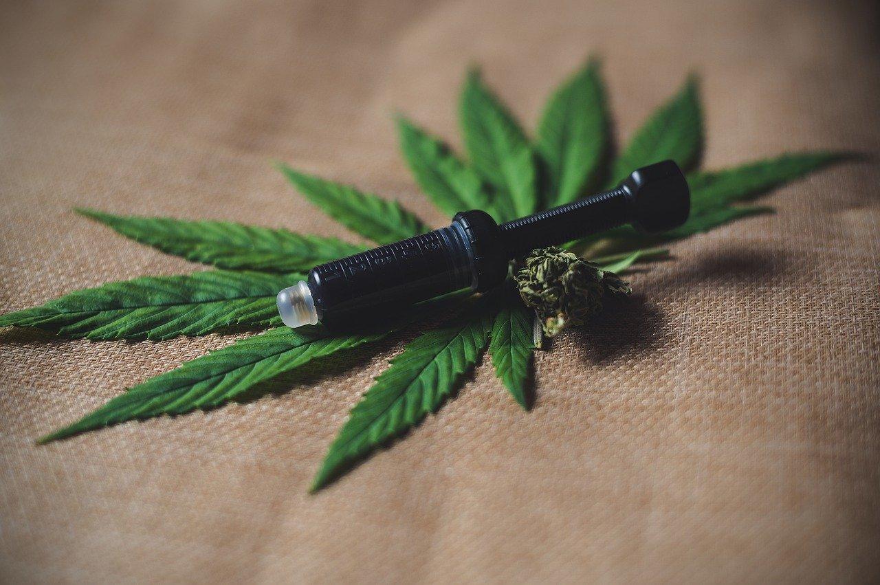 cbd hemp extract in a syringe with a hemp bud and leaf near it