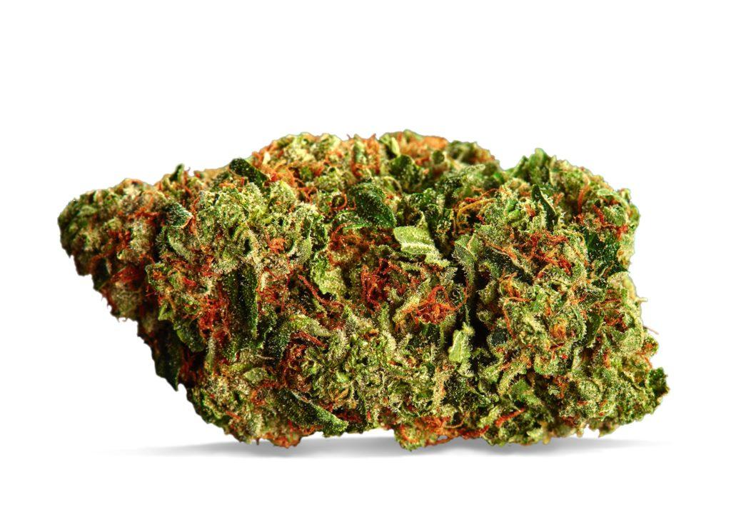 hawaiian-haze-strain-cannaflower