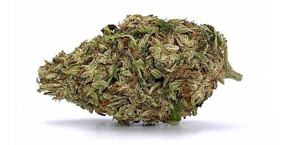 white-cbg-bud-strain