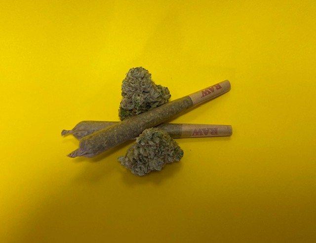 cbd-hemp-pre-rolled-joints-buds-around