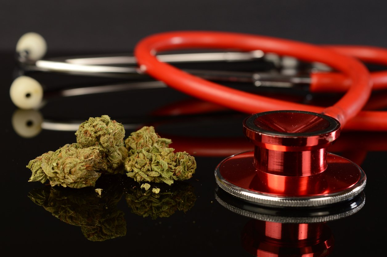 A closeup of some medical marijuana buds next to a red stethoscope for various healthcare concepts.