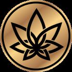 3chi-logo